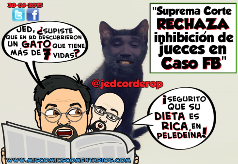 GatoConMásDe7Vidas