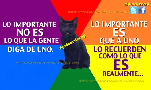 Lo_Importante